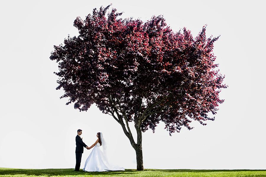Kelowna Wedding Photographers 026