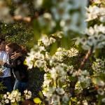 Stefanos & Kim's Engagement