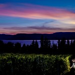 Charles & Stephanie's Summerhill Pyramid Winery Wedding