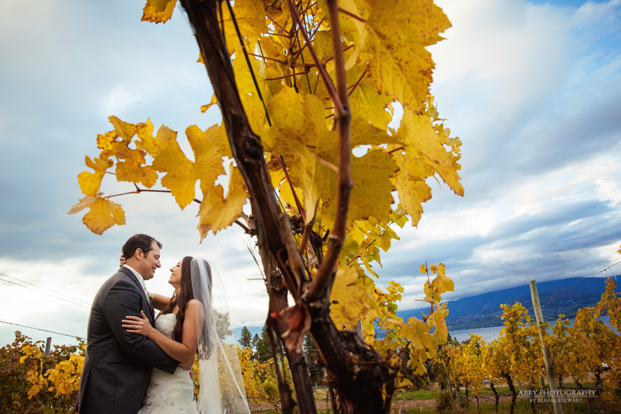 Summerhill Pyramid Winery Wedding -11