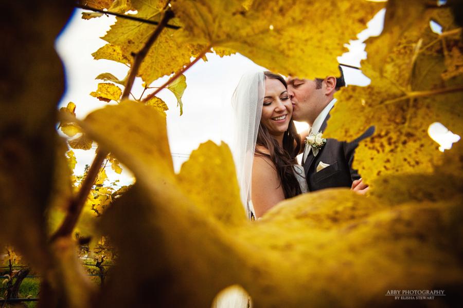 Summerhill Pyramid Winery Wedding -12